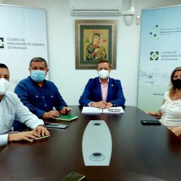 El Colegio de Mediadores de Seguros de Granada mantiene una reunión institucional con DKV
